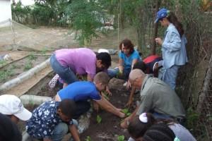 Schulgarten Consulación gemiensam wird gepflanzt
